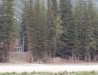 0064-Rogers_Pass.png